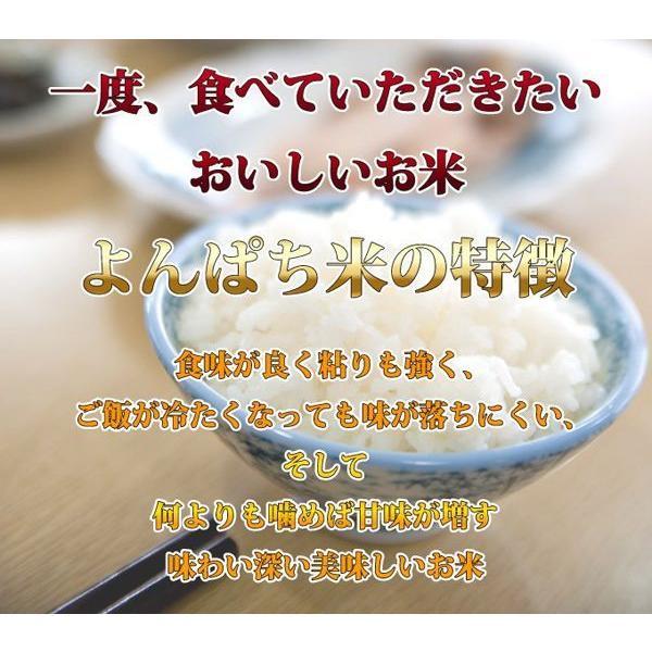 山梨県産  よんぱち米 (農林48号)10kg(5kg×2袋)   白米 通販 市場に流通しない、幻のお米 珍しいお米 レビューを書いて 送料無料|mailife|02