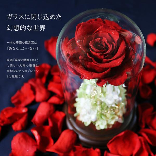 プリザーブドフラワー クリスマス 花 プレゼント プロポーズ ガラスドーム 薔薇 Princess Fleur|makefuture|05