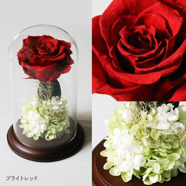 プリザーブドフラワー クリスマス 花 プレゼント プロポーズ ガラスドーム 薔薇 Princess Fleur|makefuture|06