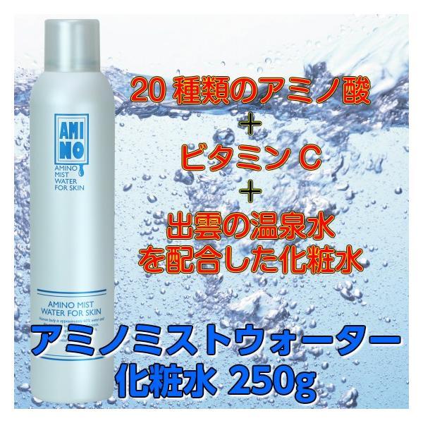 安心のメーカー直販 アミノ ミスト ウォーター 化粧水 250g|makelucky