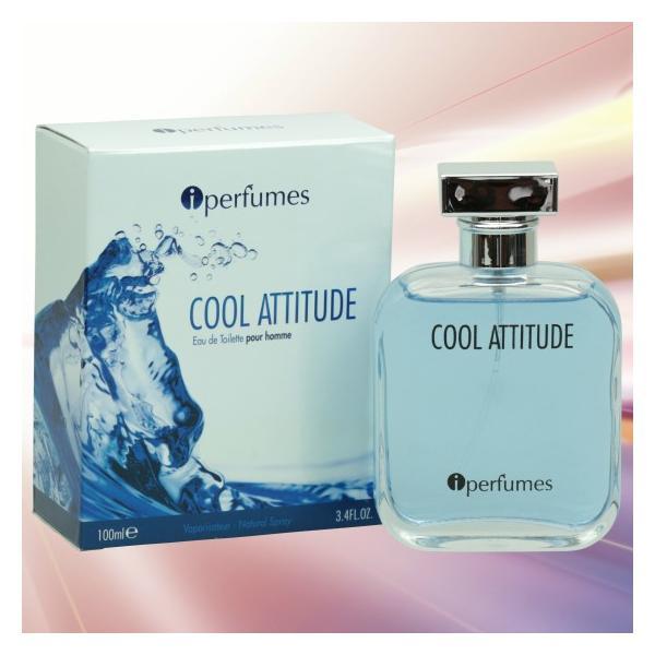 安心のメーカー直販 アイパフューム クールアティチュード オードトワレ EDT SP 100ml 香水 (ケンゾー KENZO ローパーケンゾープールオム)タイプの香り|makelucky