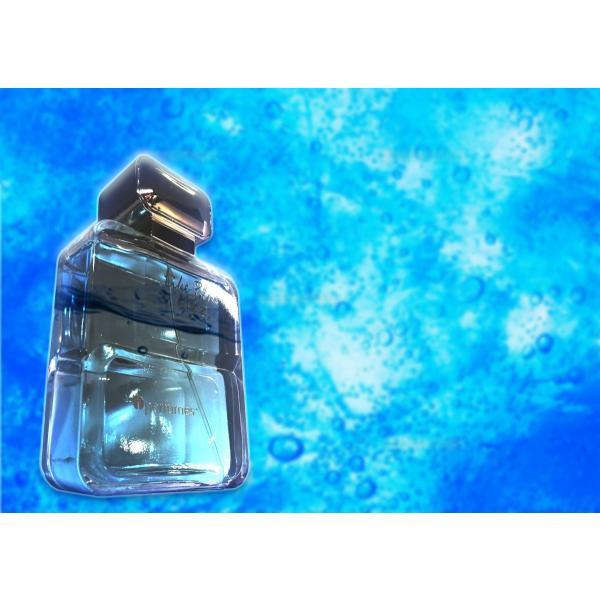 安心のメーカー直販 アイパフューム ライクブルーフィズ オードトワレ EDT SP 100ml (あすつく 香水) (ドルチェ&ガッバーナ ライトブルー)タイプの香り|makelucky|02
