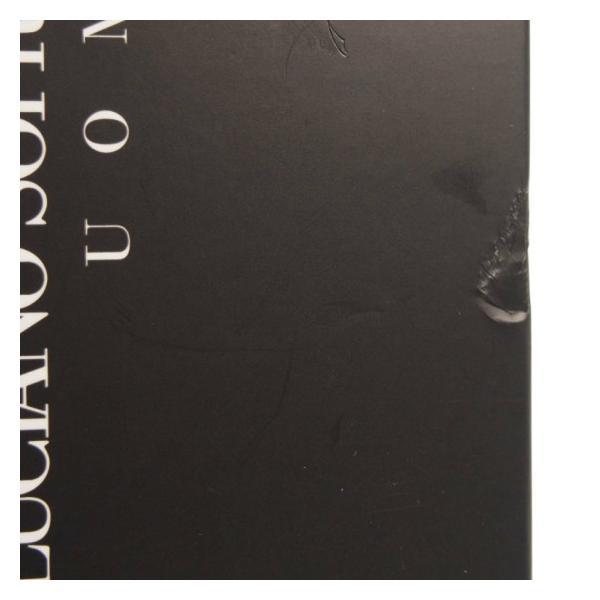 (アウトレット) ルチアーノ ソプラーニ LUCIANO SOPRANI ルチアーノ ソプラーニ ウォモ オードトワレ EDT SP 50ml (あすつく 香水)|makelucky|02