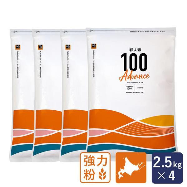 セット 強力粉 春よ恋100 北海道産パン用小麦粉 2.5kg×4 国産小麦粉 パン作り