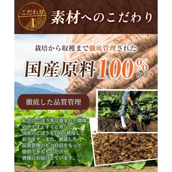ごぼう茶 国産 ゴボウ茶 ティーバッグ 2g×30包 健康茶 母乳 ママセレクト 青森 北海道 食物繊維 イヌリン|mamaselect|06