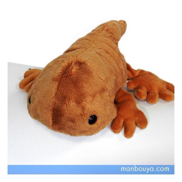 サンショウウオのぬいぐるみ グッズ 雑貨 A-SHOW cutie! ぬいぐるみ 山椒魚 22cm