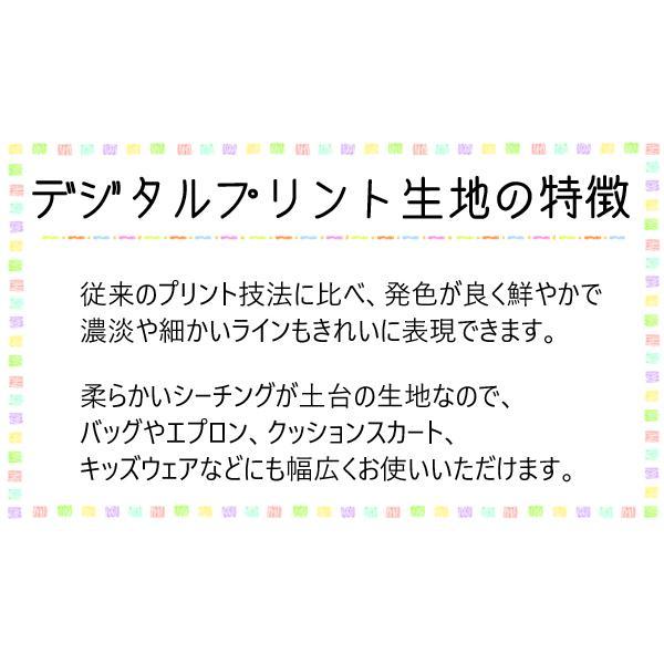 [AW] さらら 清らかなリアルローズ2 cホワイト 10cm  DPJ-098-A  シーチング生地|manmakasan|06