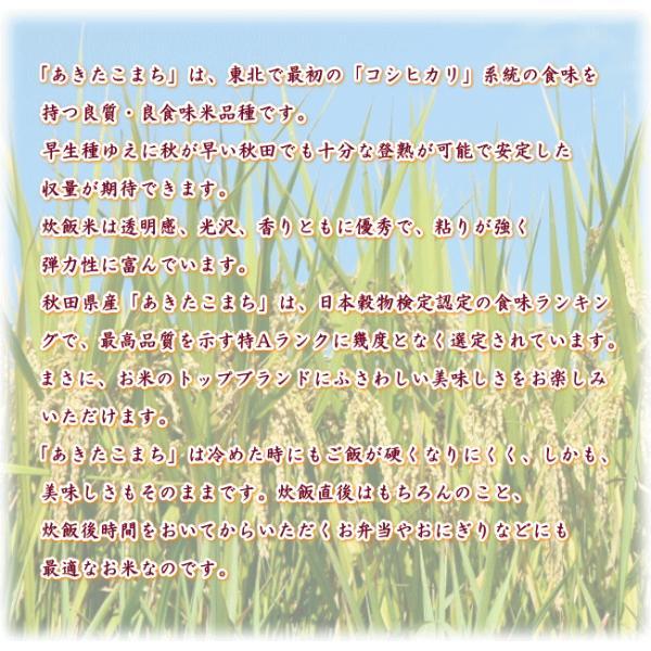 あきたこまち 10kg(5kg×2袋)  秋田県産 お米 30年産 送料無料 『30年秋田県産あきたこまち(白米5kg×2)』|manmayarice|02