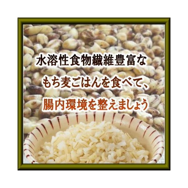 ◆同梱専用◆送料別 『愛媛県産もち麦100g』|manmayarice|02