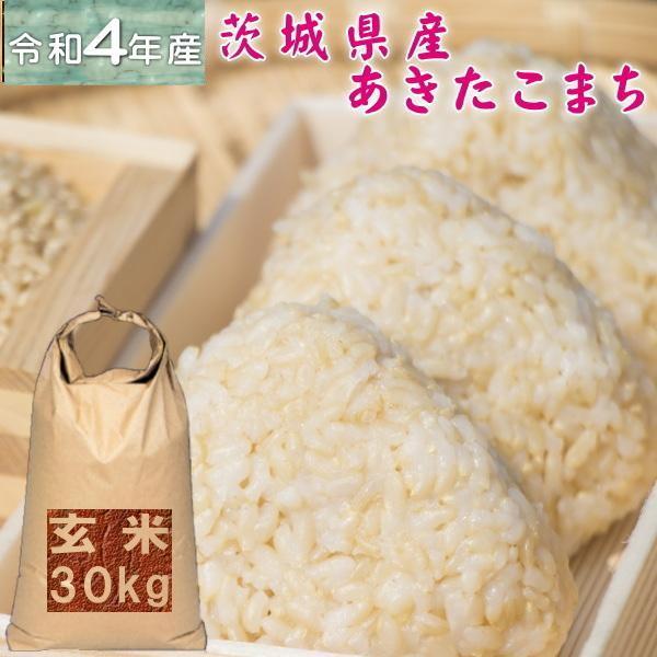 新米 30kg 送料無料 お米 3年産 30キロ おこめ 『令和3年茨城県産あきたこまち玄米30kg』