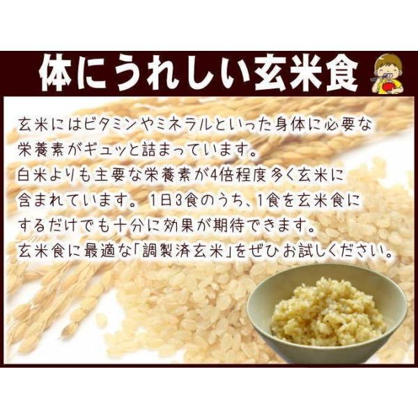 お米 10kg 送料無料 国内産  『うちの自慢のおこめ(調製玄米10kg)』|manmayarice|02