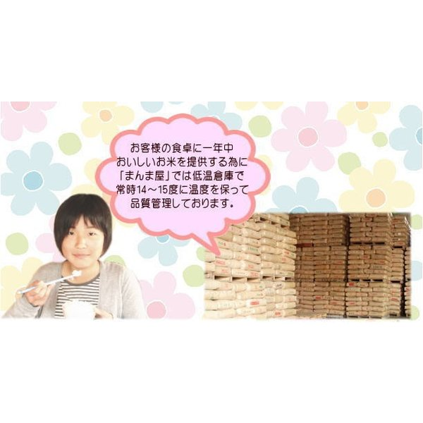 天のつぶ 10kg(5kg×2袋) 福島県産 お米 30年産 送料無料 『30年福島県産天のつぶ(白米5kg×2)』|manmayarice|05