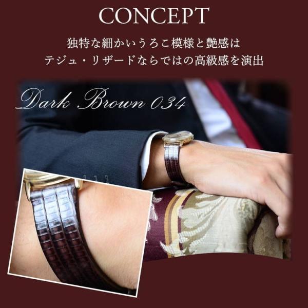 腕時計ベルト バンド 交換 テジュ リザード 20mm 19mm 18mm 17mm CASSIS HAVRE U1089041|mano-a-mano|05