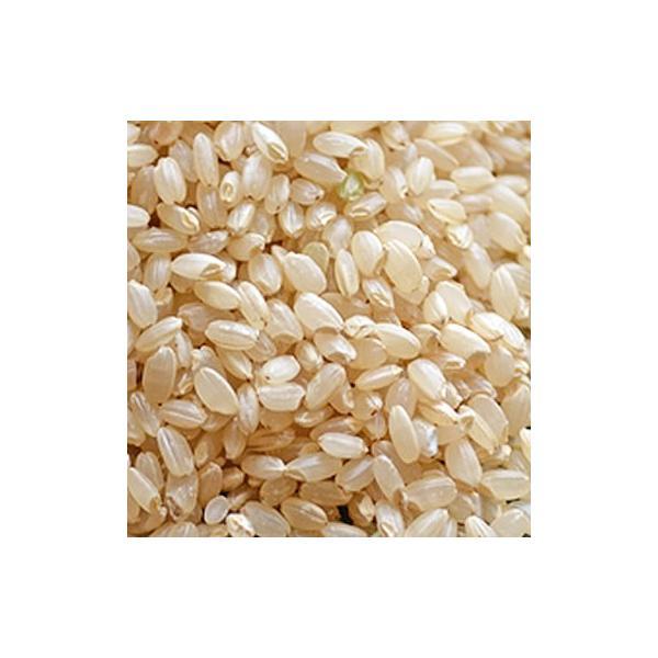 令和2年産 長野県上伊那産コシヒカリ 特別栽培米 玄米1kg単位販売(乳白ポリ袋入)※量り売りとなります。
