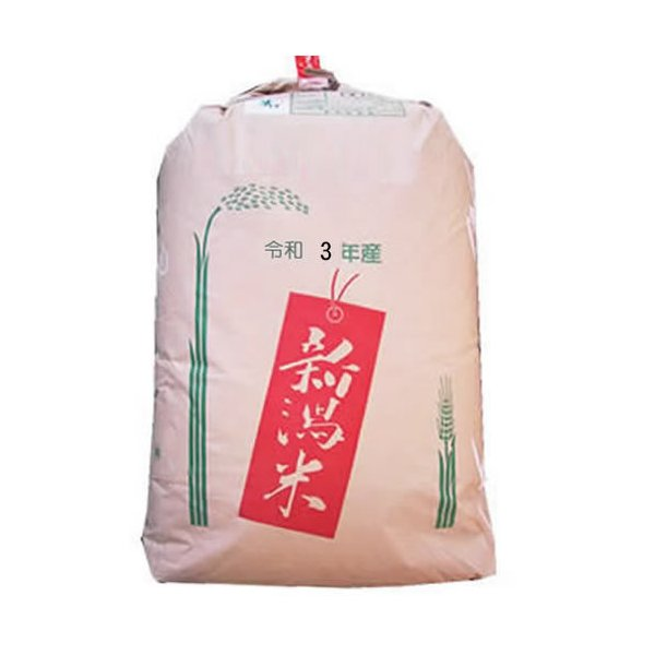 こしいぶき 玄米30kg こしいぶき 1等 新潟県産 北陸 越後の米 令和2年産  【事業所配送(個人宅不可)】【精米料無料】