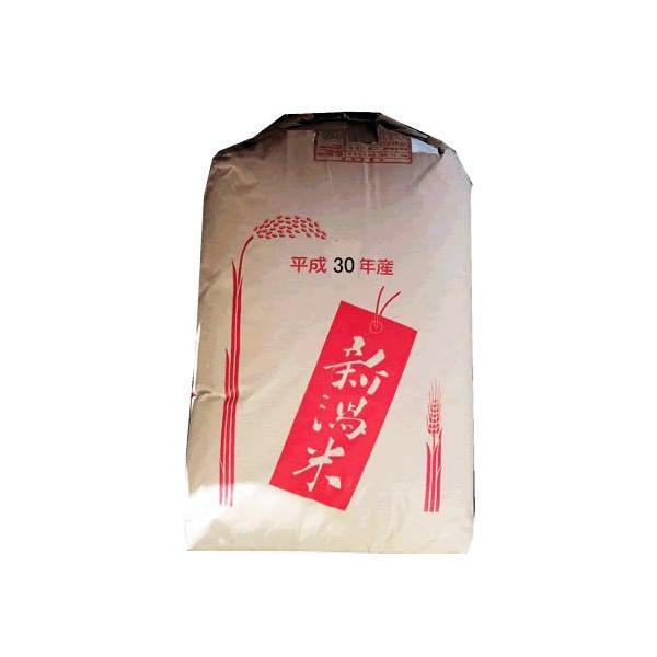 最高級 もち米 令和2年産 新潟県産 こがねもち 白米30kg 大型精米機精製済み