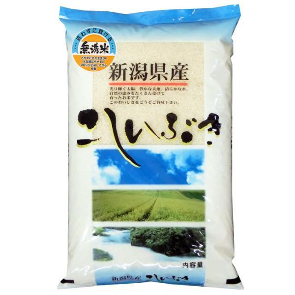 新米 無洗米 5kg こしいぶき 新潟県産 無洗米 北陸 越後の米 令和3年産 予約販売