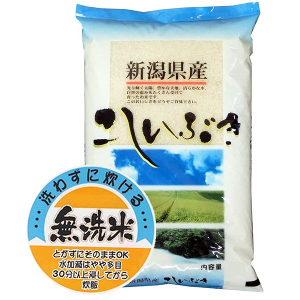 新米 無洗米 5kg こしいぶき 新潟県産 無洗米 北陸 越後の米 令和3年産【事業所配送(個人宅不可)】