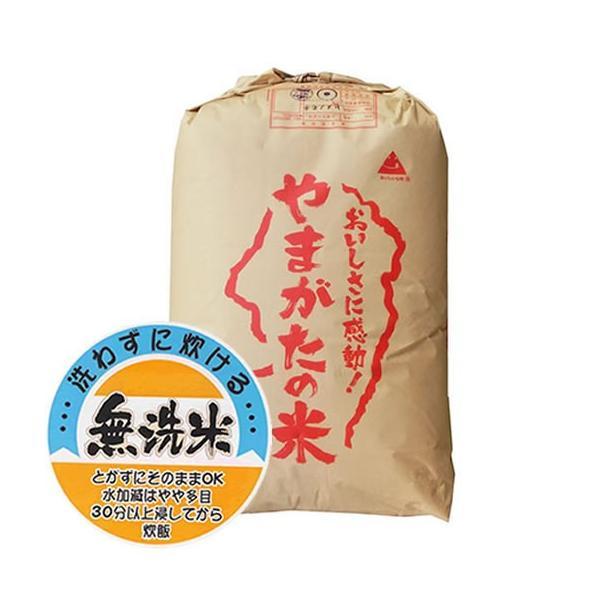 【無洗米】 もち米 特別栽培米 令和2年産 山形県産 ヒメノモチ 30kg