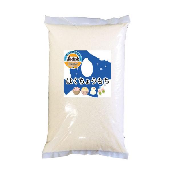 【事業所配送(個人宅不可)】 無洗米 令和2年産 北海道産 はくちょうもち 10kg