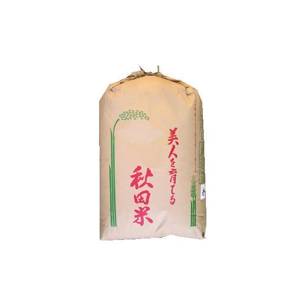 玄米30kg あきたこまち 1等 秋田県羽後産 循環型農業 JAうご 令和2年産  【事業所配送(個人宅不可)】【精米料無料】