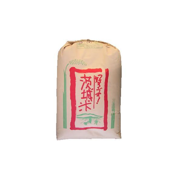 あきたこまち 新米 玄米30kg あきたこまち 1等 茨城県稲敷産  令和3年産  【事業所配送(個人宅不可)】【精米料無料】