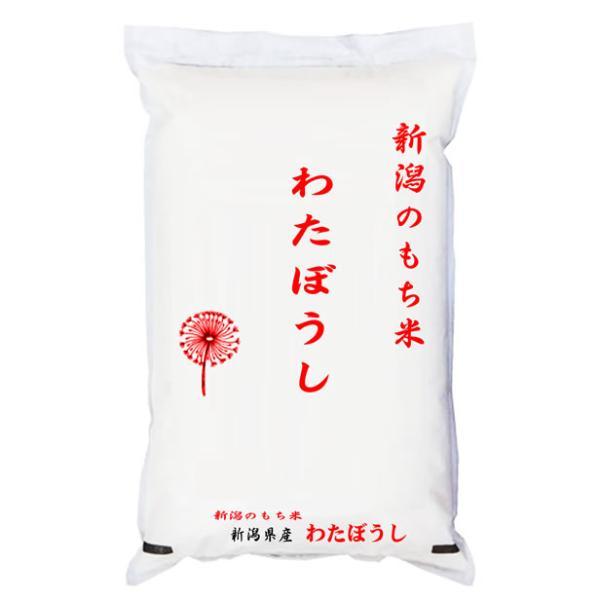 わたぼうし 新米 米5kg 新潟県産 もち米 令和3年産 予約販売