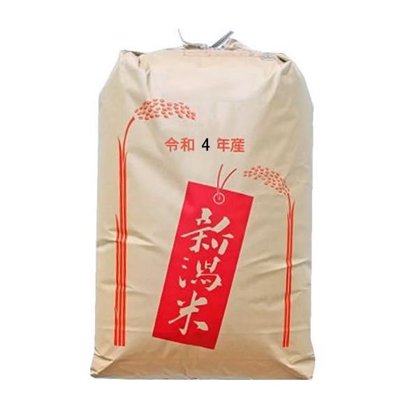 新米 おいしいもち米 令和3年産新潟県産わたぼうし 精米30kg 予約販売