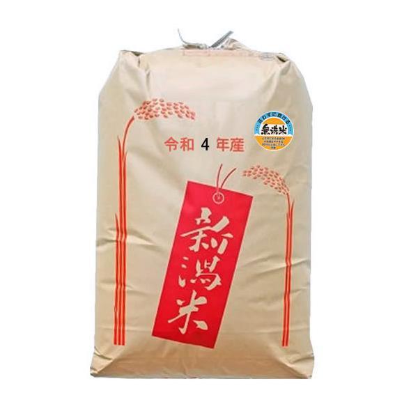 新米 【無洗米】もち米 令和3年産新潟県産わたぼうし 精米30kg 予約販売
