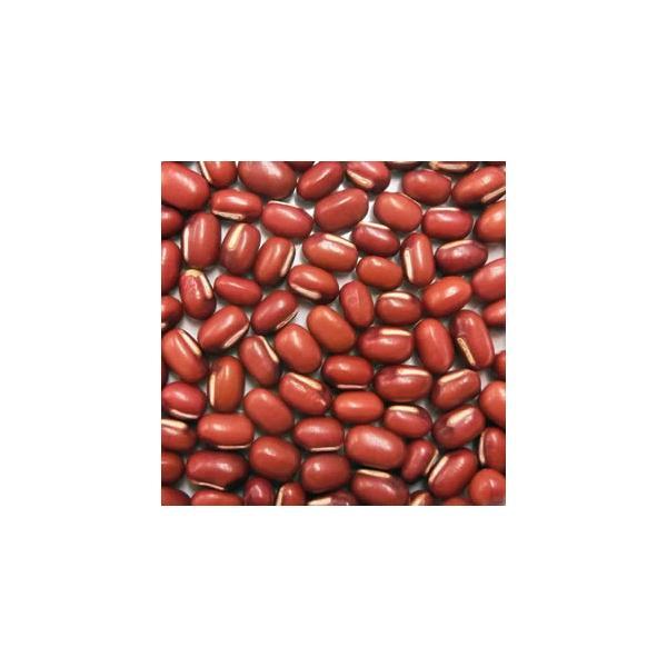 輸入小豆 カナダ産小豆 30kg 品種:えりも他
