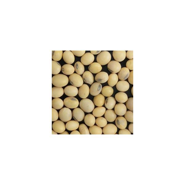 輸入大豆 米国ケンタッキー州産黄大豆 IOM同等品 NON-GMO(遺伝子組み換えではない)30kg 用途:豆腐ほか