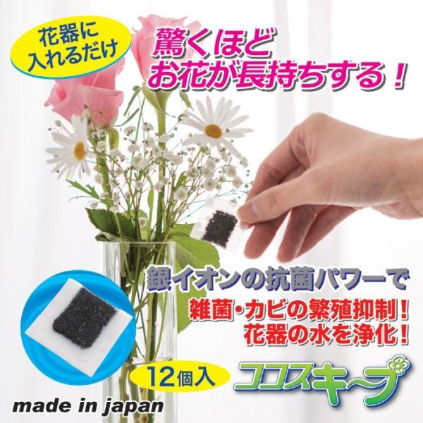 花瓶 雑貨 便利 生け花イキイキ ココスキープ 12個入 ネコポス発送 送料180円|maone