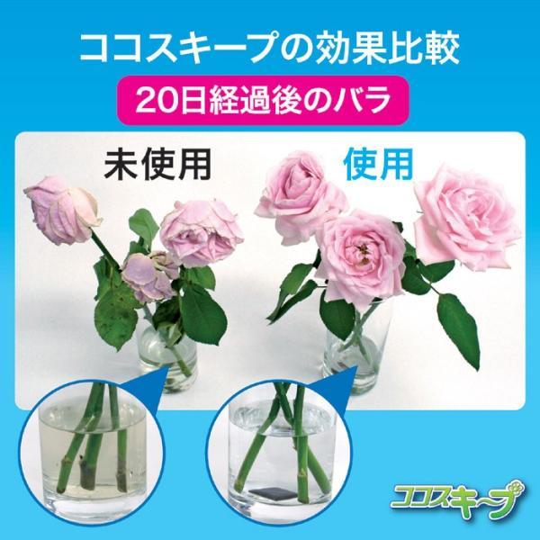花瓶 雑貨 便利 生け花イキイキ ココスキープ 12個入 ネコポス発送 送料180円|maone|03