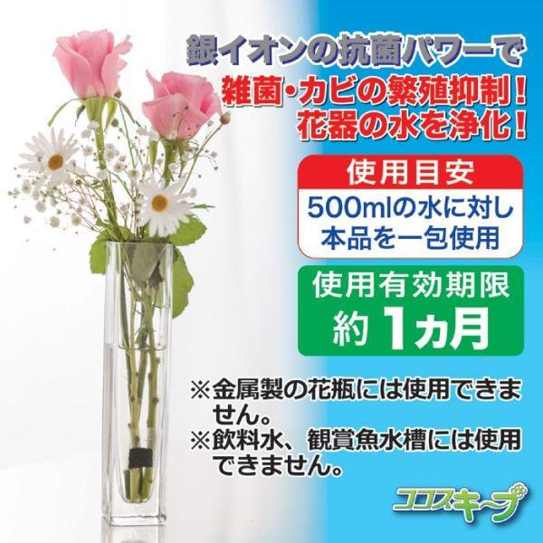 便利 グッズ 生け花イキイキ!ココスキープ(12個入) 花瓶 (雑貨)|maone|04