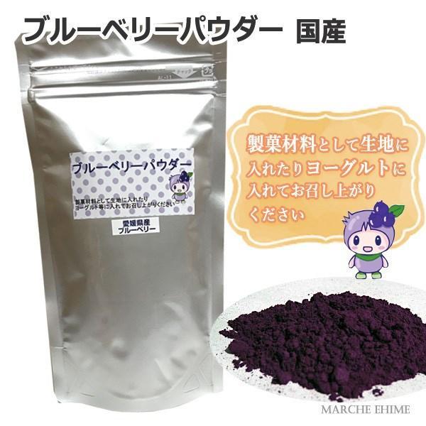 ブルーベリーパウダー 75g 2袋 国産 愛媛県産ブルーベリー使用 お菓子作りや製菓材料に