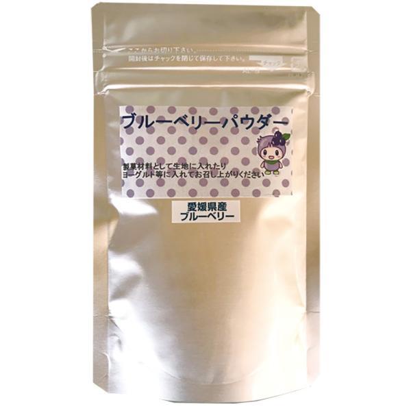 ブルーベリーパウダー 25g お試し 初回限定 少量 限定品 国産 愛媛 製菓材料 高山ガーデン