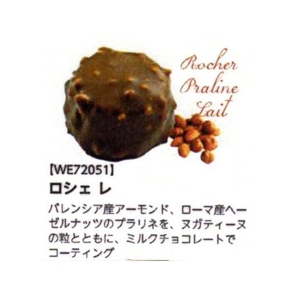 ロシェ プラリネ レ (ボンボン・オ・ショコラ) ヌガティーヌ入りナッツチョコレート 100個