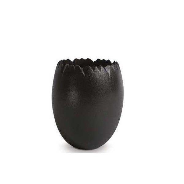 チョコレート用 色粉  黒(ノワール)色 200g 業務用 フランスPCB社