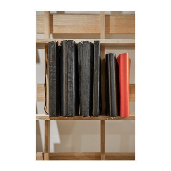 DVD収納 DVDシェルフ シェルフラック (天然木集成材) 木製 大容量 300枚|margherita|11