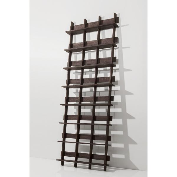 ディスプレイ収納 DVDシェルフ (天然木集成材) 収納ラック 木製 大容量 300枚|margherita|03