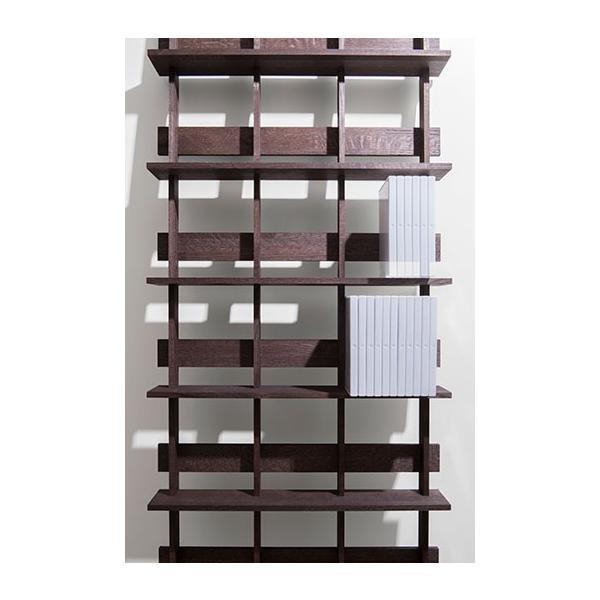 ディスプレイ収納 DVDシェルフ (天然木集成材) 収納ラック 木製 大容量 300枚|margherita|05