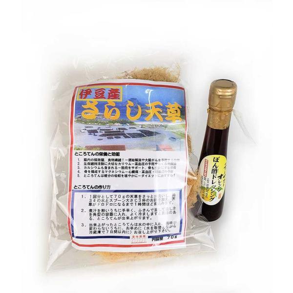 天草 心太 伊豆 ところてん 天然物 70g ニューサマーぽん酢セット