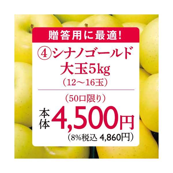 りんご 林檎(贈答用)(予約)(Dコース)長野県産シナノゴールド大玉りんご5kg(11月上旬〜中旬出荷)