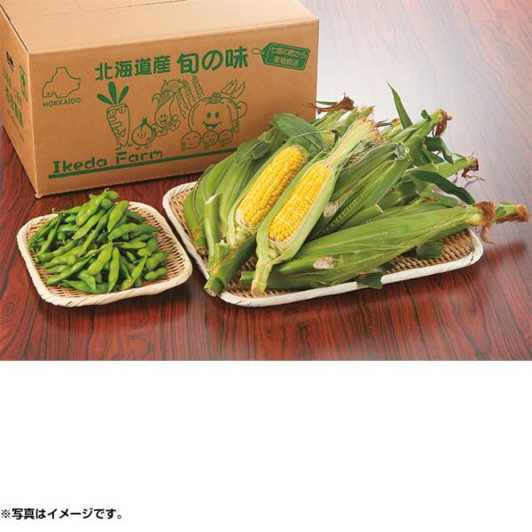 お中元 ギフト 北海道産 池田さんのとうもろこし&枝豆セット (220_21夏)