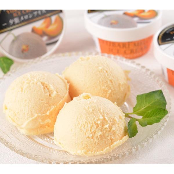 お取り寄せグルメ 送料無料 ギフト     夕張メロンアイスクリーム(17個) 代引不可