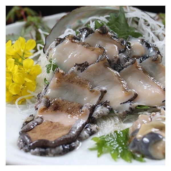 活えぞあわび養殖(韓国産)活ざざえ各3個入〔海水入酸素入]〔送料無料〕9種類のカラーレシピ&保存方法付なのでご家庭で料理できます それに100%活きたまま|marukatsu-onjuku11|03