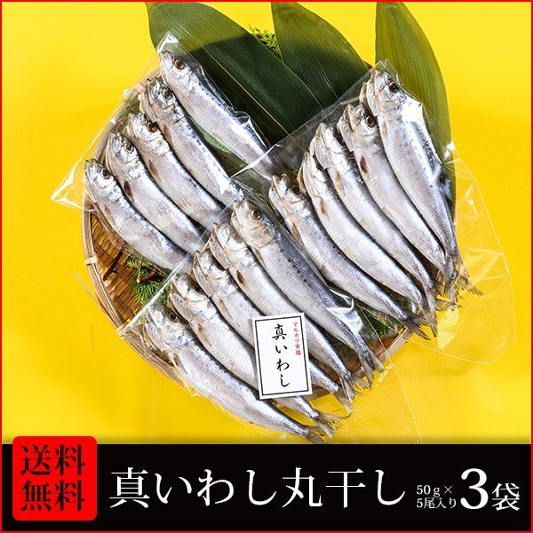 干物 送料無料 (16) 真いわし丸干し5尾入り×3袋 合計15尾  朝食・お酒のおつまみ・お弁当のおかずに最適です |marukatsu-onjuku11