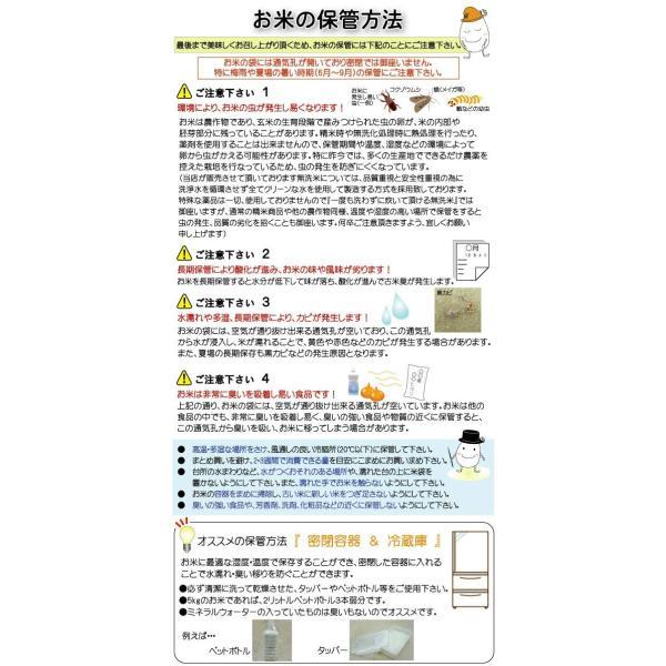 令和元年産 窒素充填ゆうパケット(メール便)配送 北海道産 無洗米 ななつぼし 2合(300g)×1袋 ハーベストシーズン 精米HARVES|marumarumaru|03