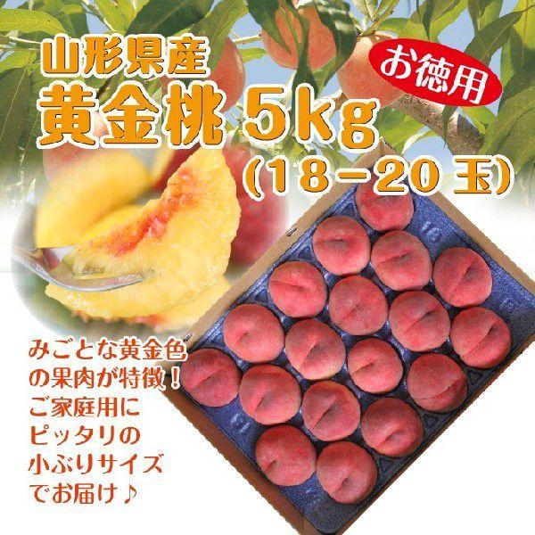 ギフト 黄金桃 送料無料 山形県産 お徳用 5kg(18-20玉) 黄桃 モモ もも