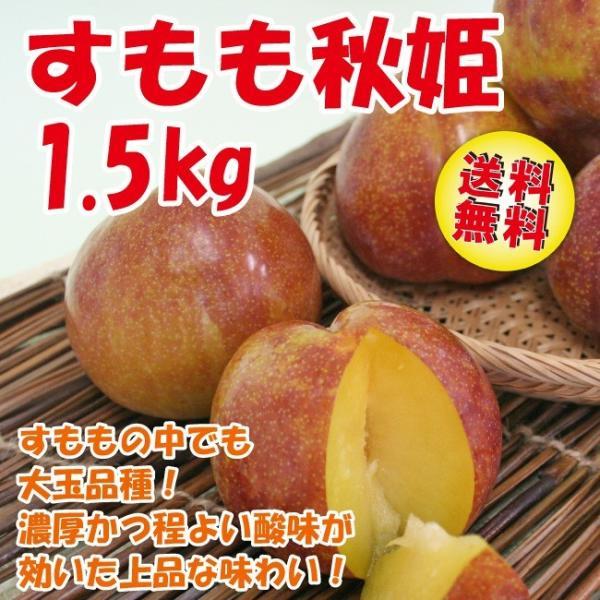 すもも プラム 送料無料 秋姫 1.5kg(9-12玉)山形県産 李